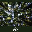 CPCVision4