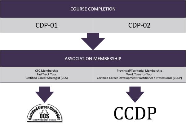 cdp-ccs-ccdp